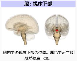 shishokabu