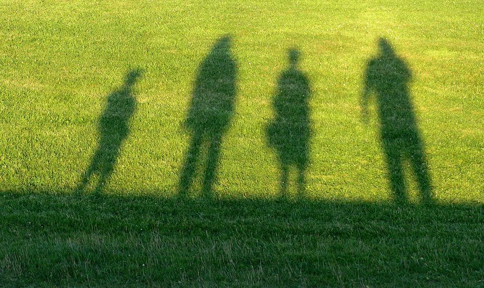 芝生に映る人影