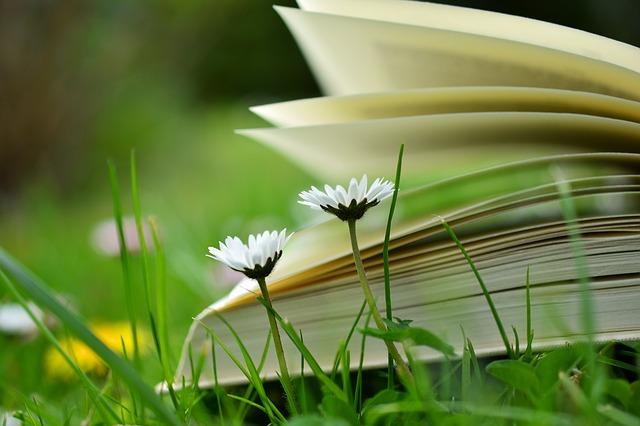 本と2輪の白い花