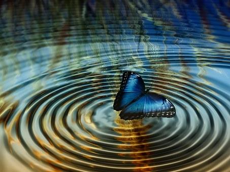 波紋と青い蝶