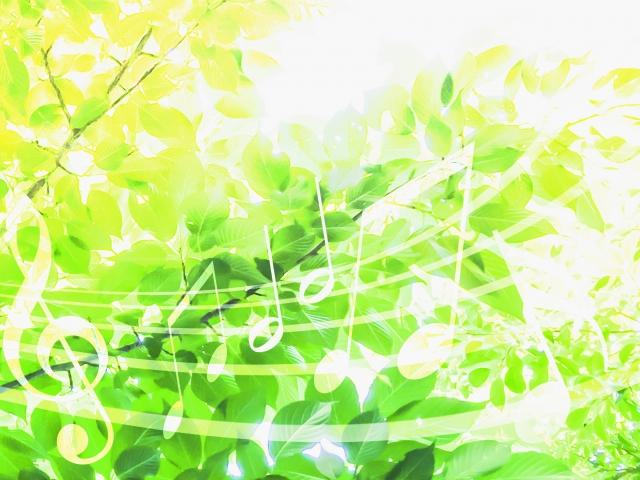 木々と音符