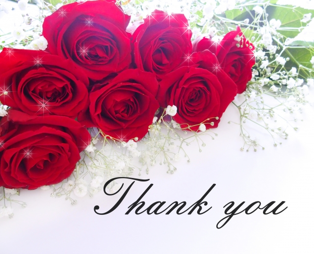 赤いバラとありがとう