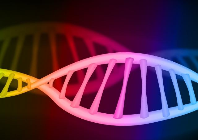 DNAのイメージ
