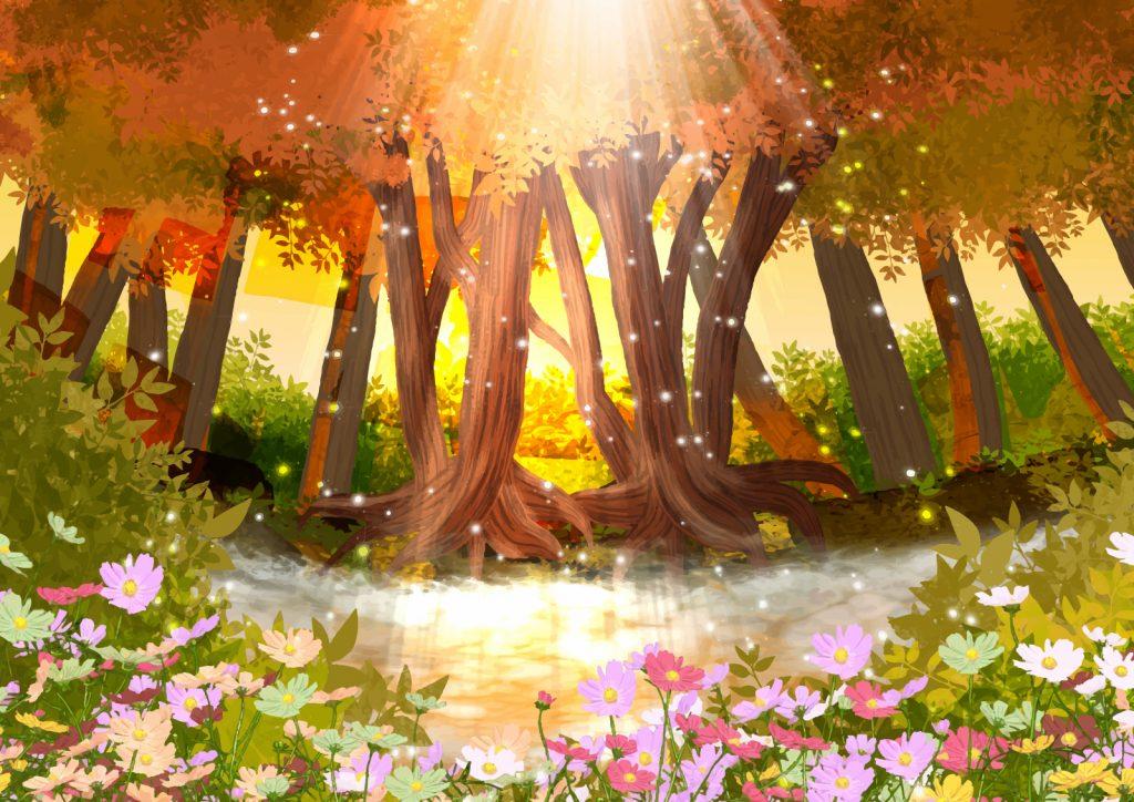 森と花の風景