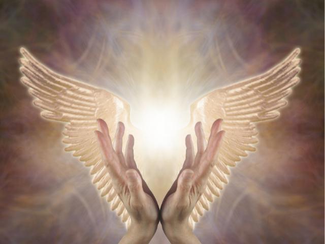 angelhands